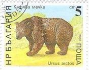 ヒグマ(羆、Brown Bear) Ursus arctos