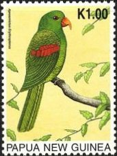 ハゴロモインコオウム Red-winged Parrots (Aprosmictus erythropterus)