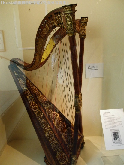 ハープ|Double Chromatic harp